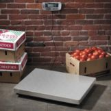 Edlund ERS-300 Digital 300 Lbs. Receiving Scale with Hold Feature