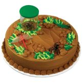 Bakery Crafts® Bug Collection Cake Kit