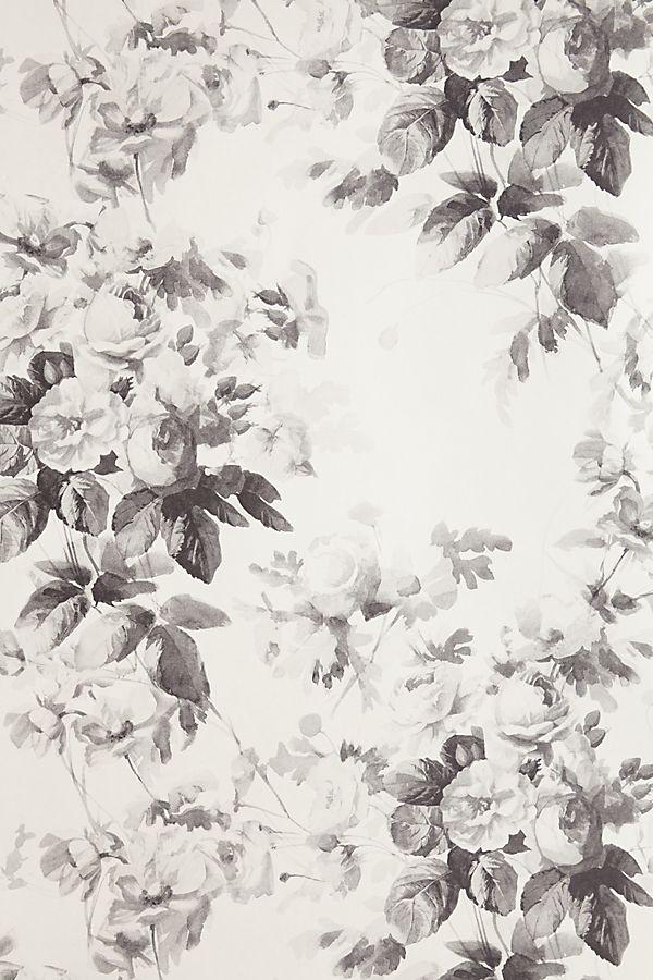 London Rose Wallpaper
