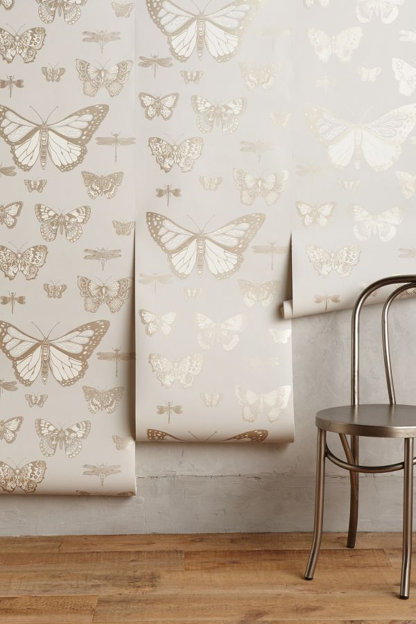 Silvery blue grey butterfly Lepidoptera Wallpaper from Anthropologie.