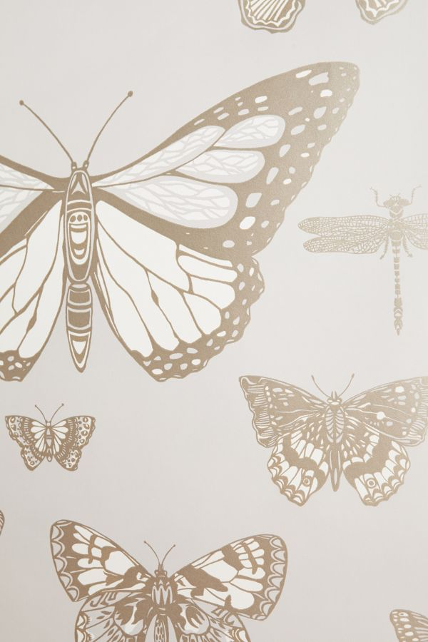 Silvery blue grey butterfly Lepidoptera Wallpaper at Anthropologie.