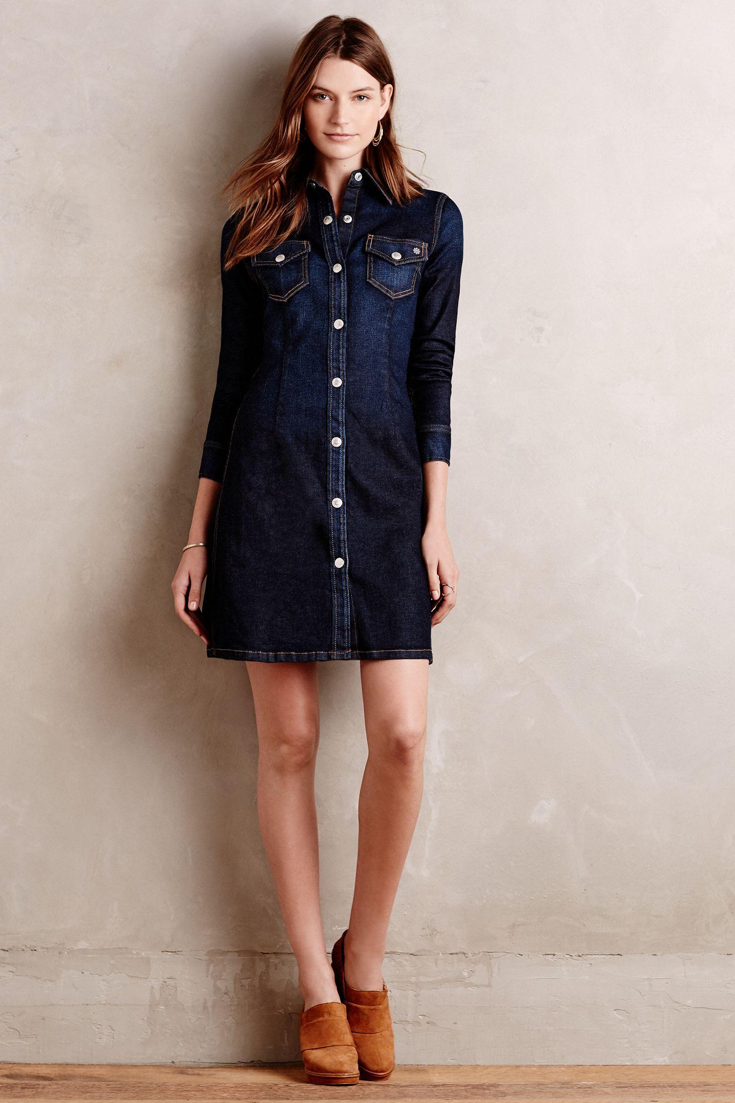 c14973649c Alexa Chung for AG Pixie Denim Shirtdress