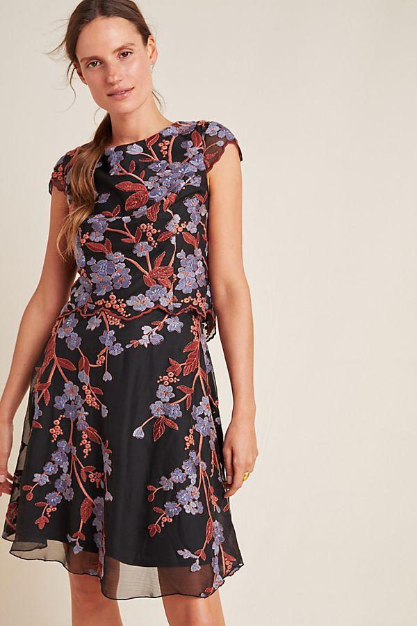 Slide View: 1: Alessia Embroidered Chiffon Mini Dress