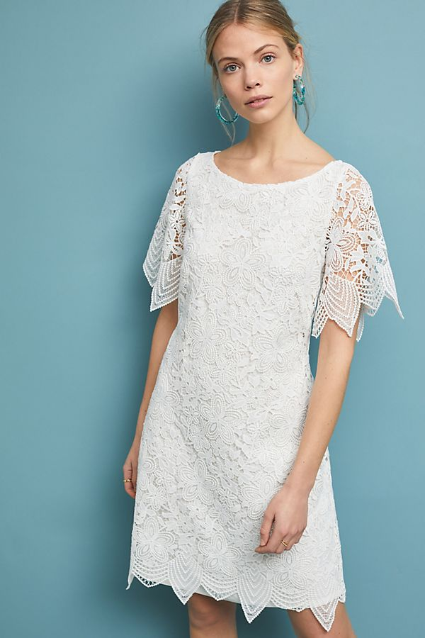934982e3d4c0 Charleston Lace Mini Dress   Anthropologie