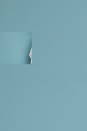 00a6cc0b137 Charleston Lace Mini Dress