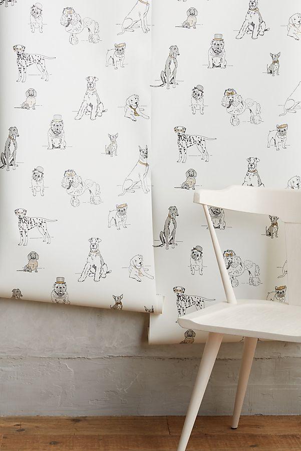 Slide View: 2: Dog's Life Wallpaper