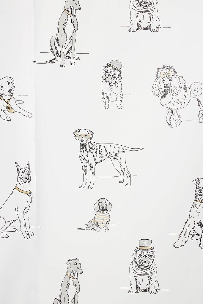 Dog S Life Wallpaper Anthropologie