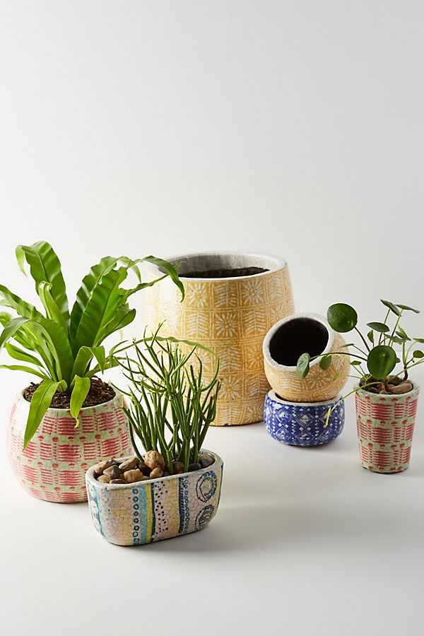 Charming Spring Mini Planters Anthropologie Marnie Pot