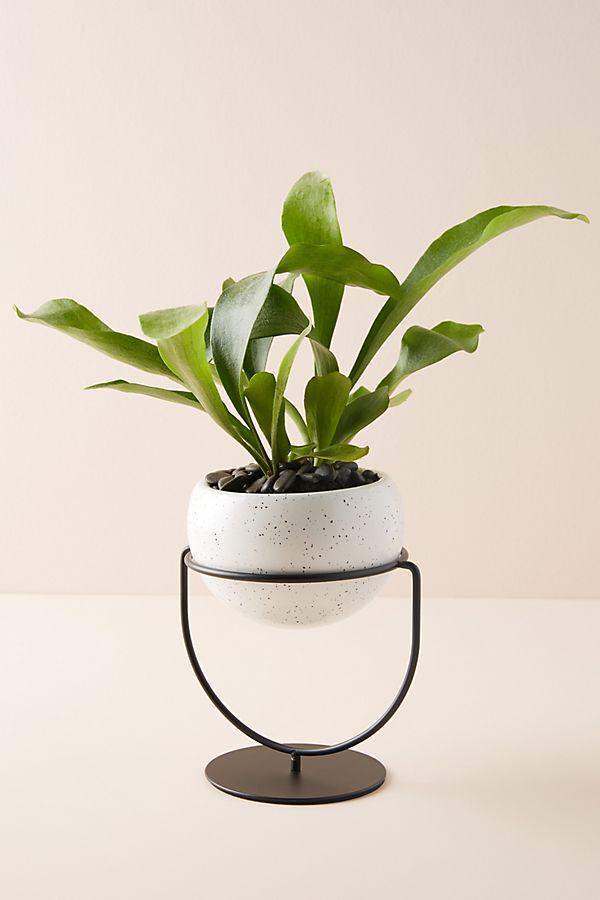 Slide View: 1: Speckled Ceramic Table Planter