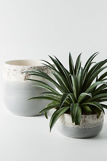 Planters | Plant Stands & Pots for Outdoors | Anthropologie