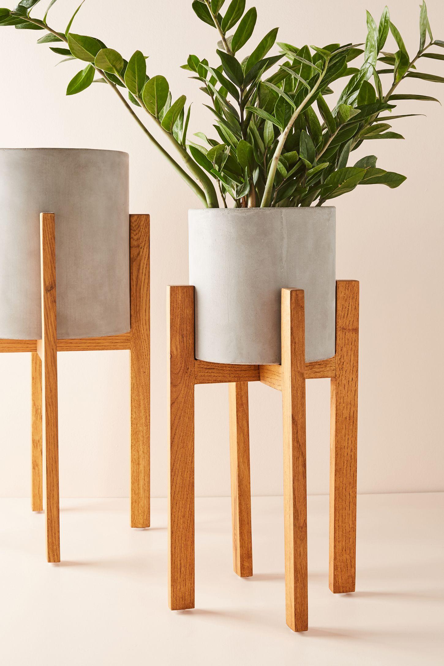 Awe Inspiring Cement Plant Stand Inzonedesignstudio Interior Chair Design Inzonedesignstudiocom