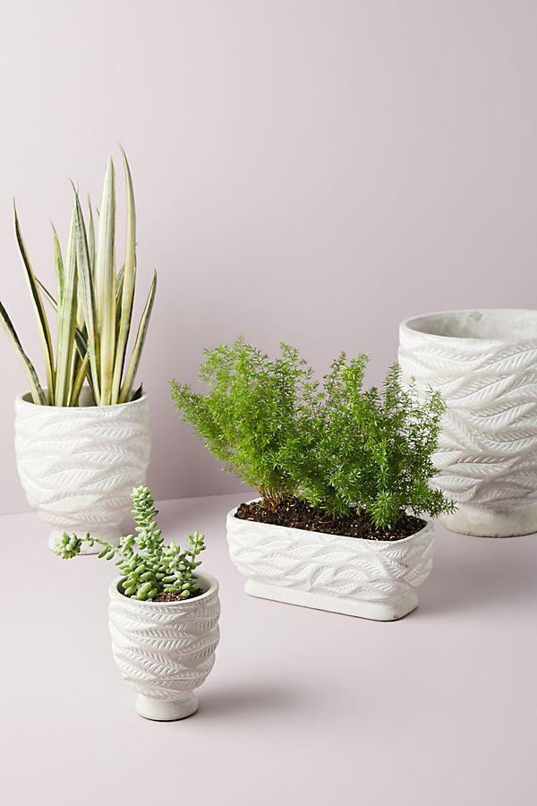 Slide View: 1: Marisa Swirled Planter