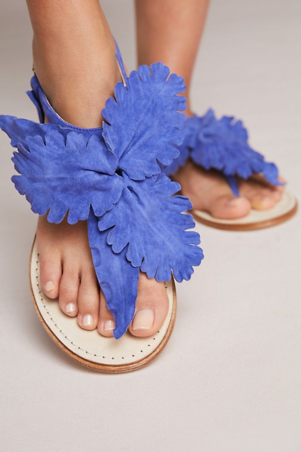 5b176ab82e6 Cecelia New York Peony Sandals