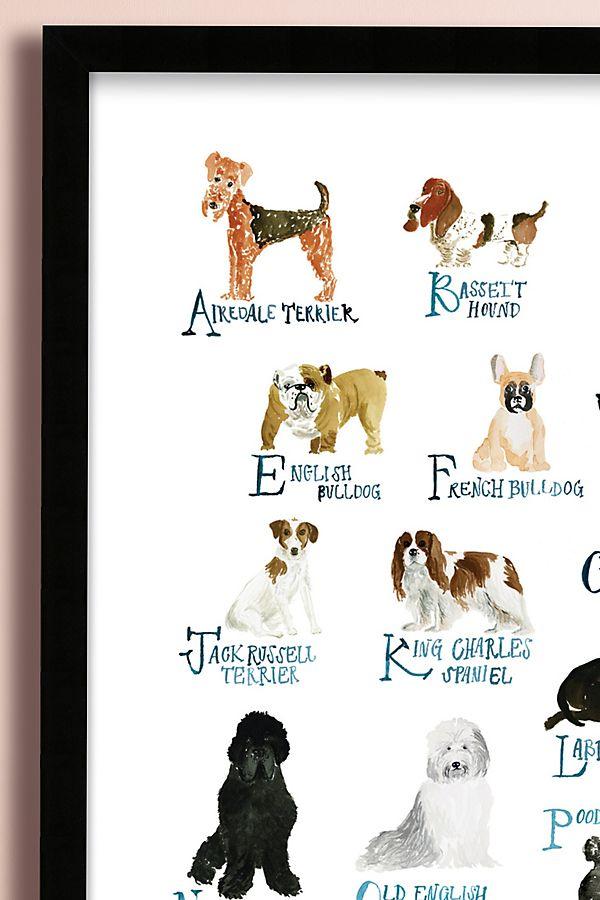 Dog Alphabet Wall Art Anthropologie Uk