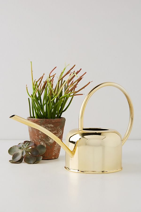 Slide View: 1: Golden Watering Can