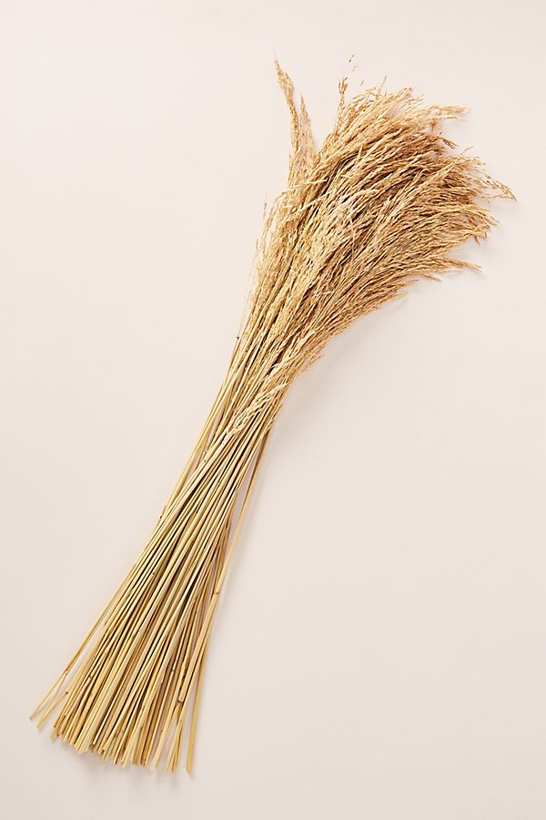 Slide View: 2: Dried Plume Reed Bouquet