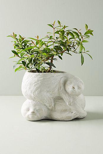 Sloth Garden Pot