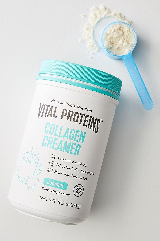 Vital Proteins Collagen Creamer Anthropologie,Different Types Of Flower Arrangement Pdf