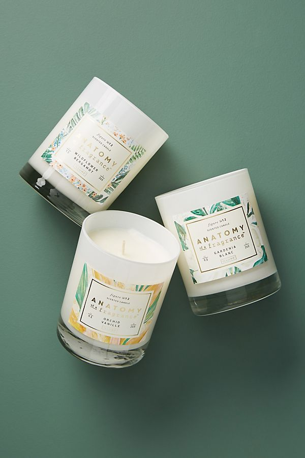 Slide View: 2: Anatomy of a Fragrance Candle