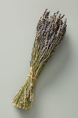 Dried Lavender Bouquet by Anthropologie