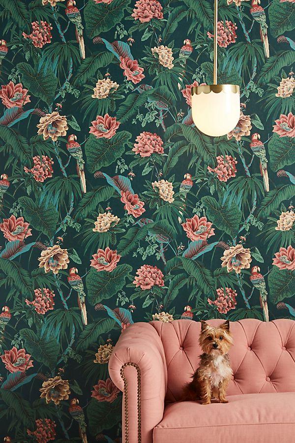 Slide View: 1: Paradisa Wallpaper