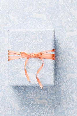 Rifle Paper Co. Fable Wrapping Paper by Rifle Paper Co.