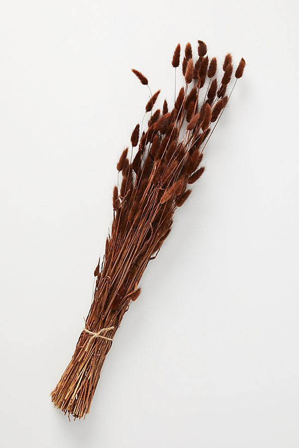 Slide View: 1: Dried Bunny Tail Bouquet