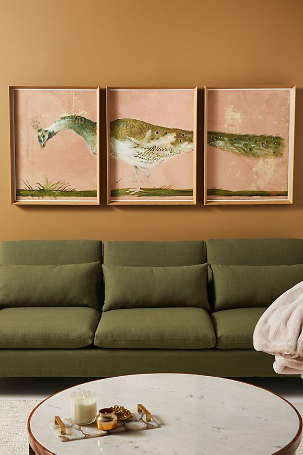 Slide View: 1: Peacock Triptych Wall Art