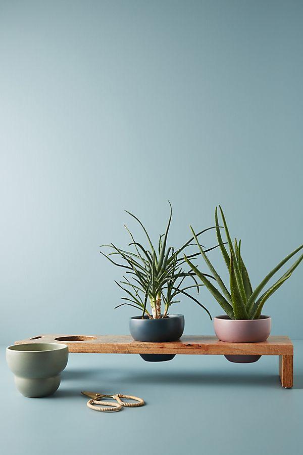 Slide View: 1: Heloise Planter Set