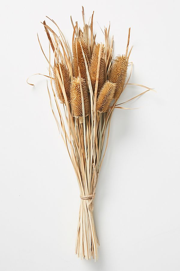 Slide View: 1: Dried Banksia Bouquet