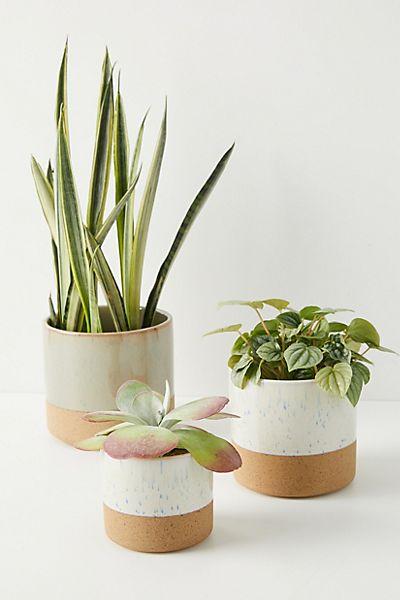 Sarah Ceramic Pot