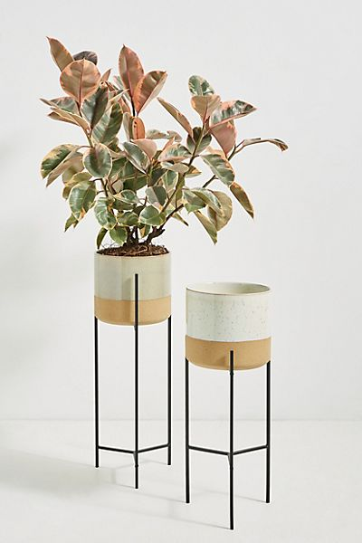 Sydney Plant Stand