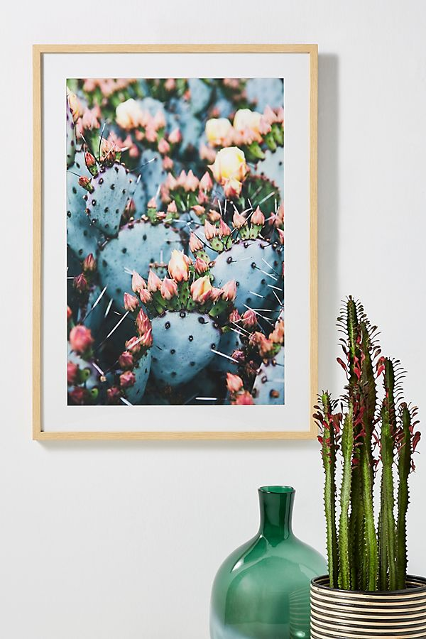 Slide View: 1: Prickly Pear Wall Art