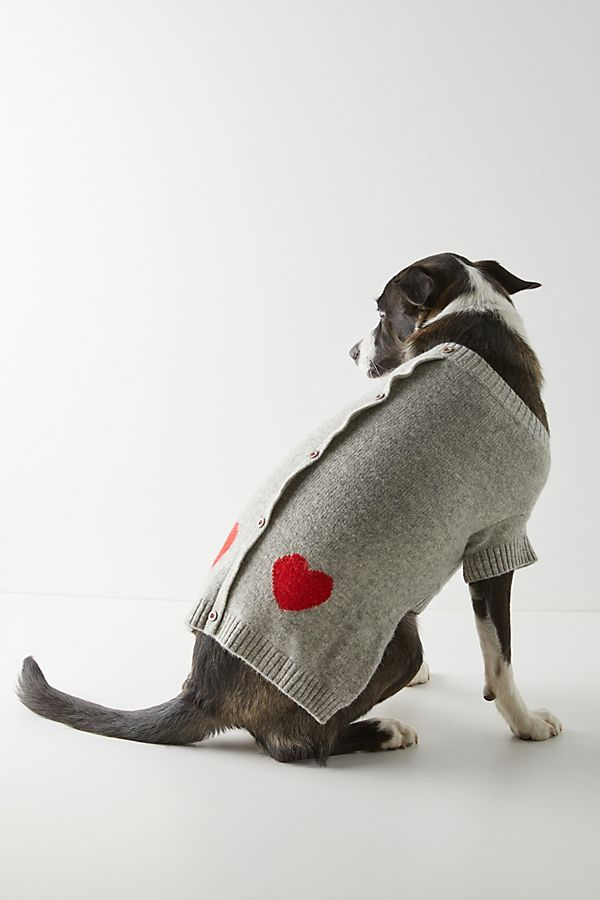 Slide View: 1: Heart Dog Sweater