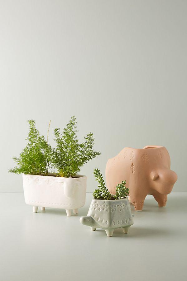 Slide View: 1: Terracotta Animal Planter