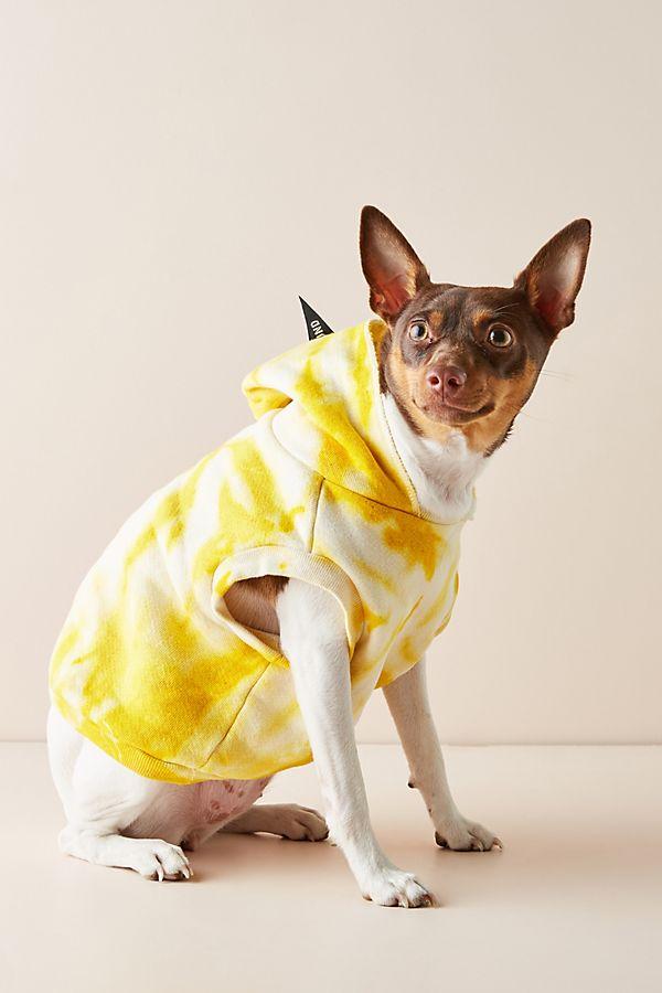 Slide View: 1: Tie-Dye Dog Sweatshirt