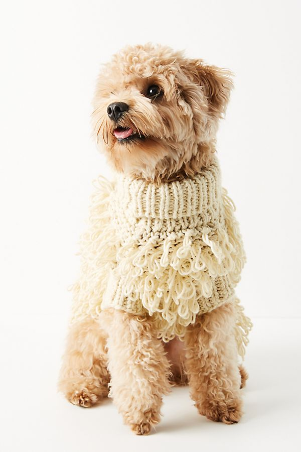 Slide View: 1: Curly Dog Sweater