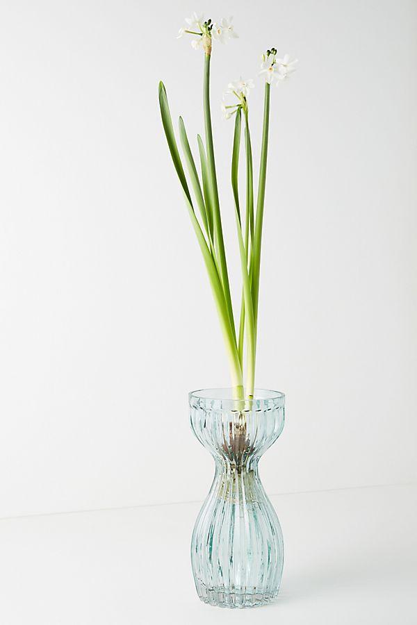 Slide View: 1: Sabella Vase