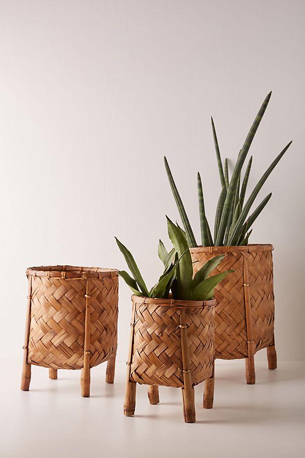 Slide View: 1: Castile Basket Planters, Set of 3