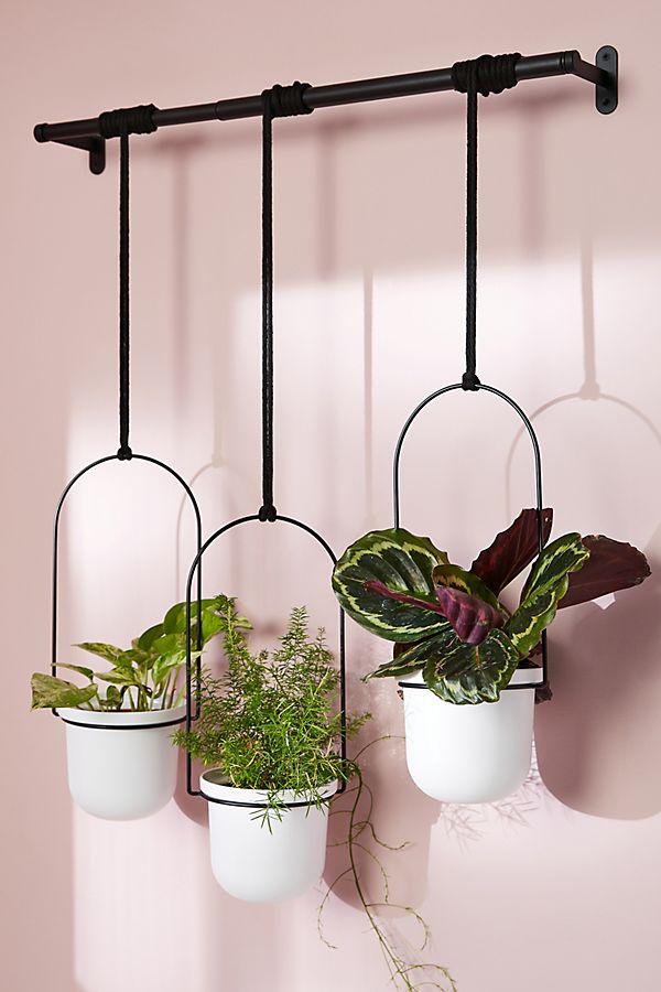 Slide View: 1: Triflora Hanging Planters, Set of 3