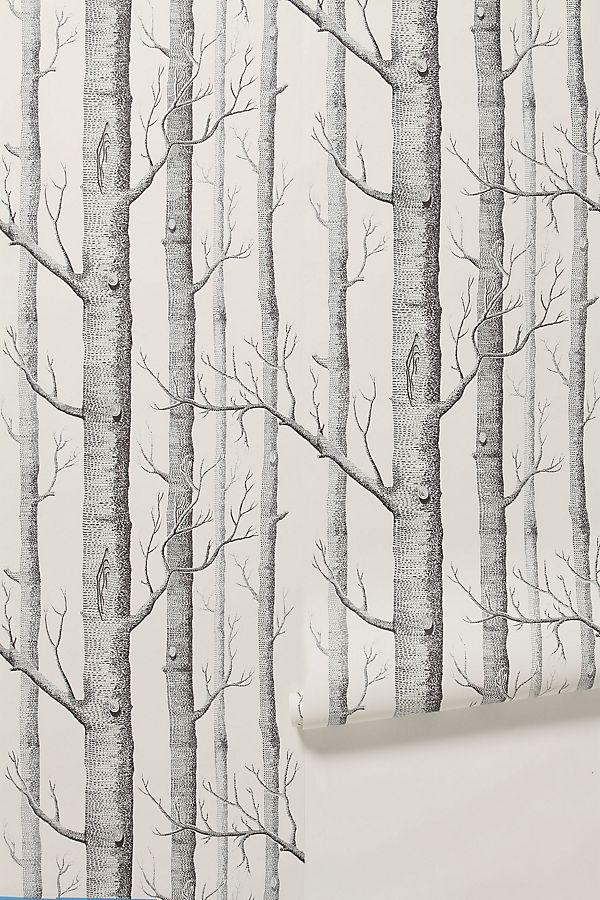 Woods Wallpaper Anthropologie