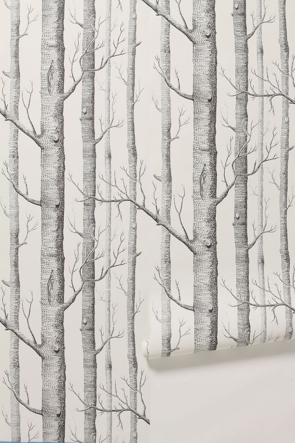 Slide View: 1: Woods Wallpaper