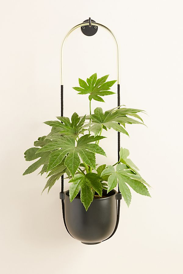 Slide View: 1: Bolo Hanging Planter