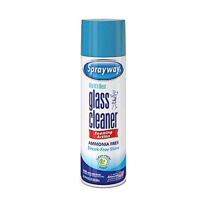 Sprayway Glass Cleaner,19 OZ