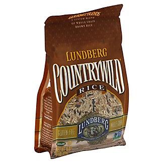 Lundberg Country Wild Rice, 16 oz