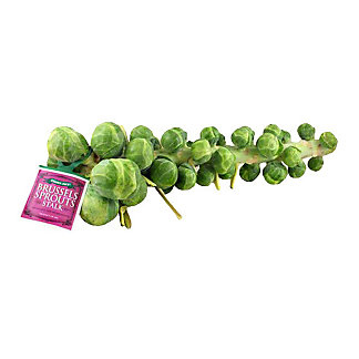 Fresh Brussels Sprouts Stalk,EACH