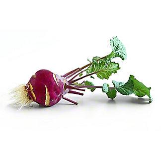 Fresh Purple Kohlrabi, ea