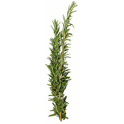 Fresh Rosemary, ea