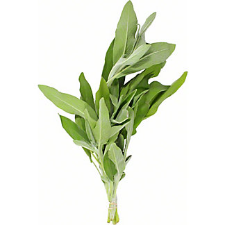 Fresh Bunched Sage, ea