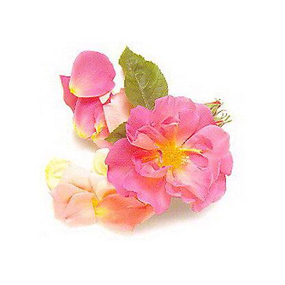 Fresh Edible Flowers, .25 OZ
